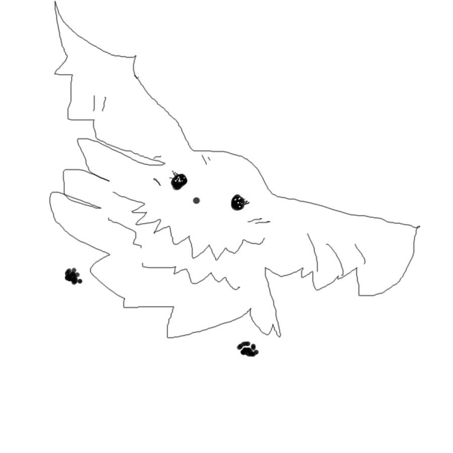 飛ぶ、ポメちゃん.jpg
